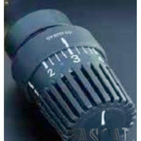 "Термостат ""Uni LH"", антрацит (RAL 7016)"
